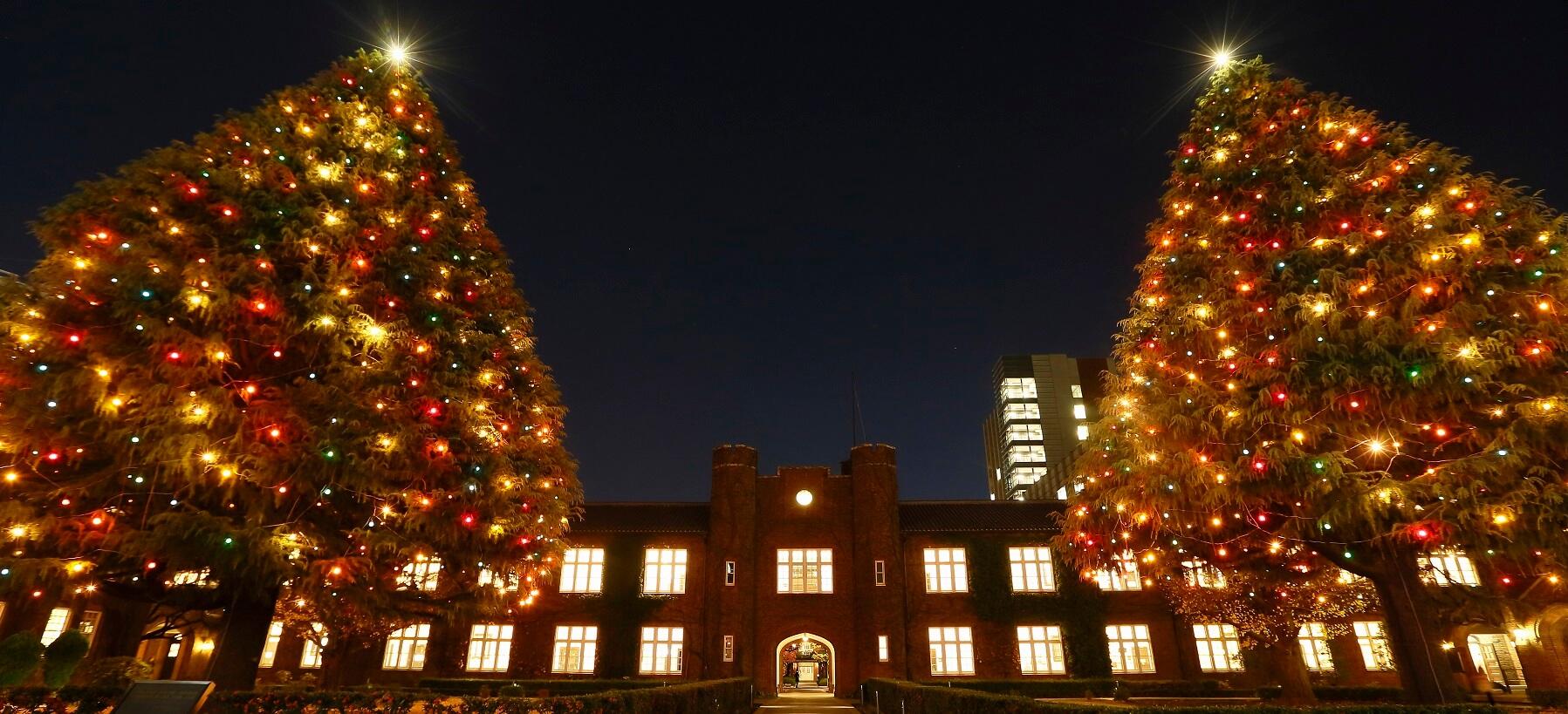 「立教 クリスマスツリー インスタ」の画像検索結果
